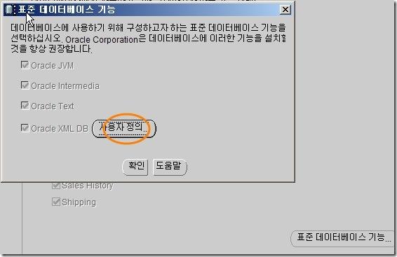 사용자 지정 9